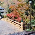 山中温泉こおろぎ橋